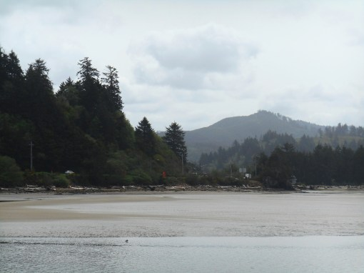 All photos from Siletz Bay, OR 2016