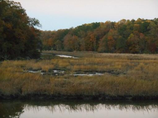 Halfway Creek