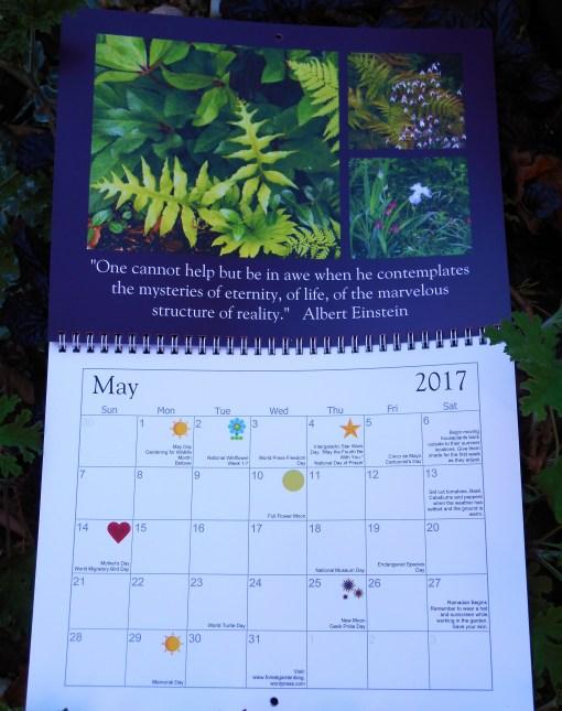 november-18-2016-calendar-037