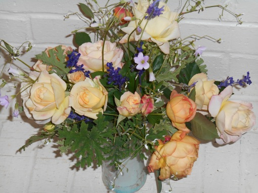 november-21-2016-roses-008