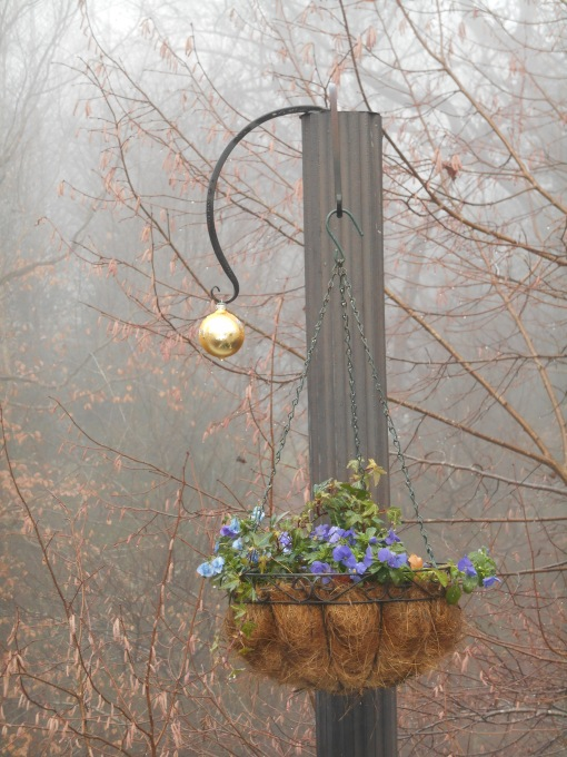 december-25-2016-christmas-foggy-morning-001