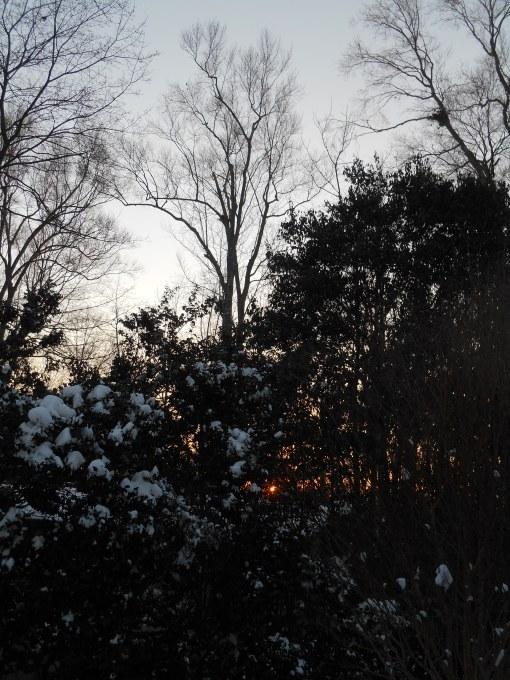 january-9-2017-snow-and-ice-030