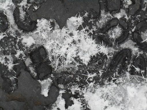 january-9-2017-snow-and-ice-033